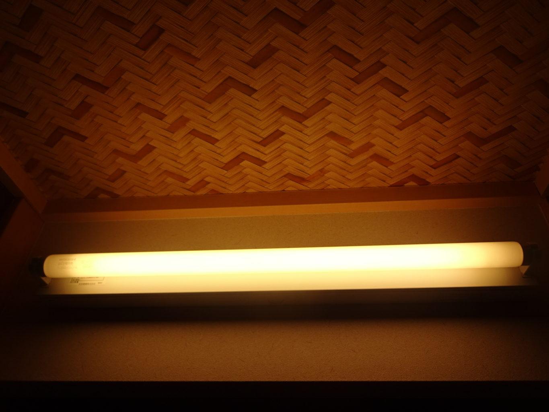 直管型蛍光灯